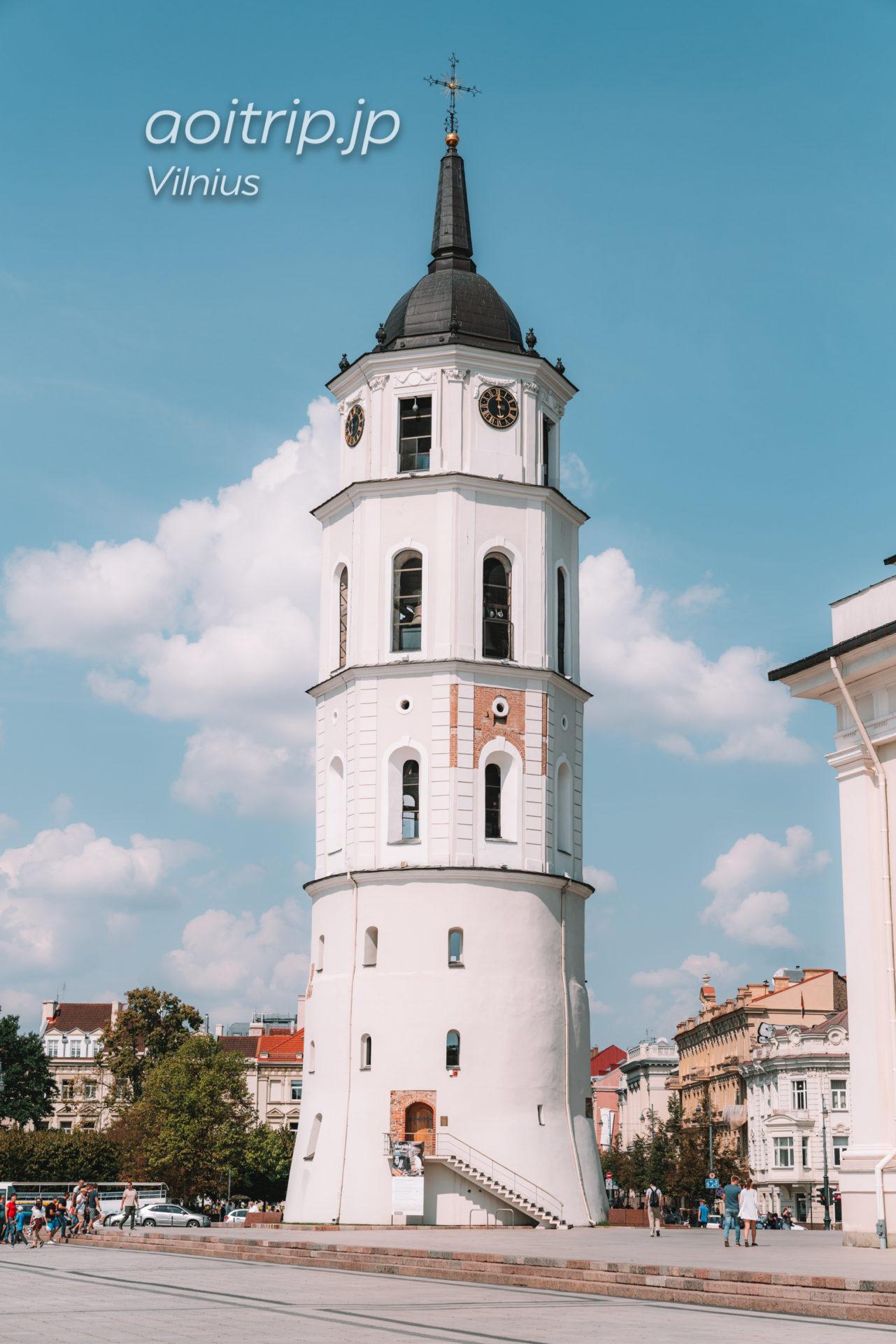 リトアニア ヴィリニュスの大聖堂 アルキカテドゥラ