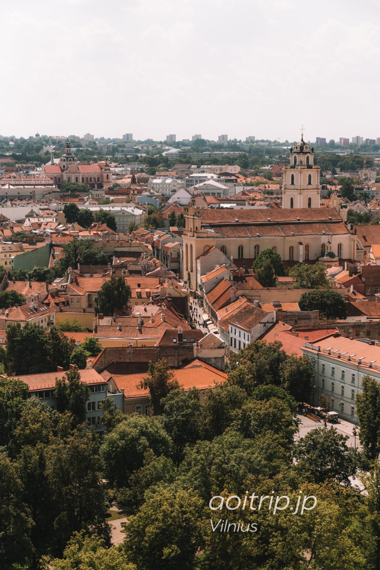 リトアニア ヴィリニュスのゲディミナス塔 からの眺望