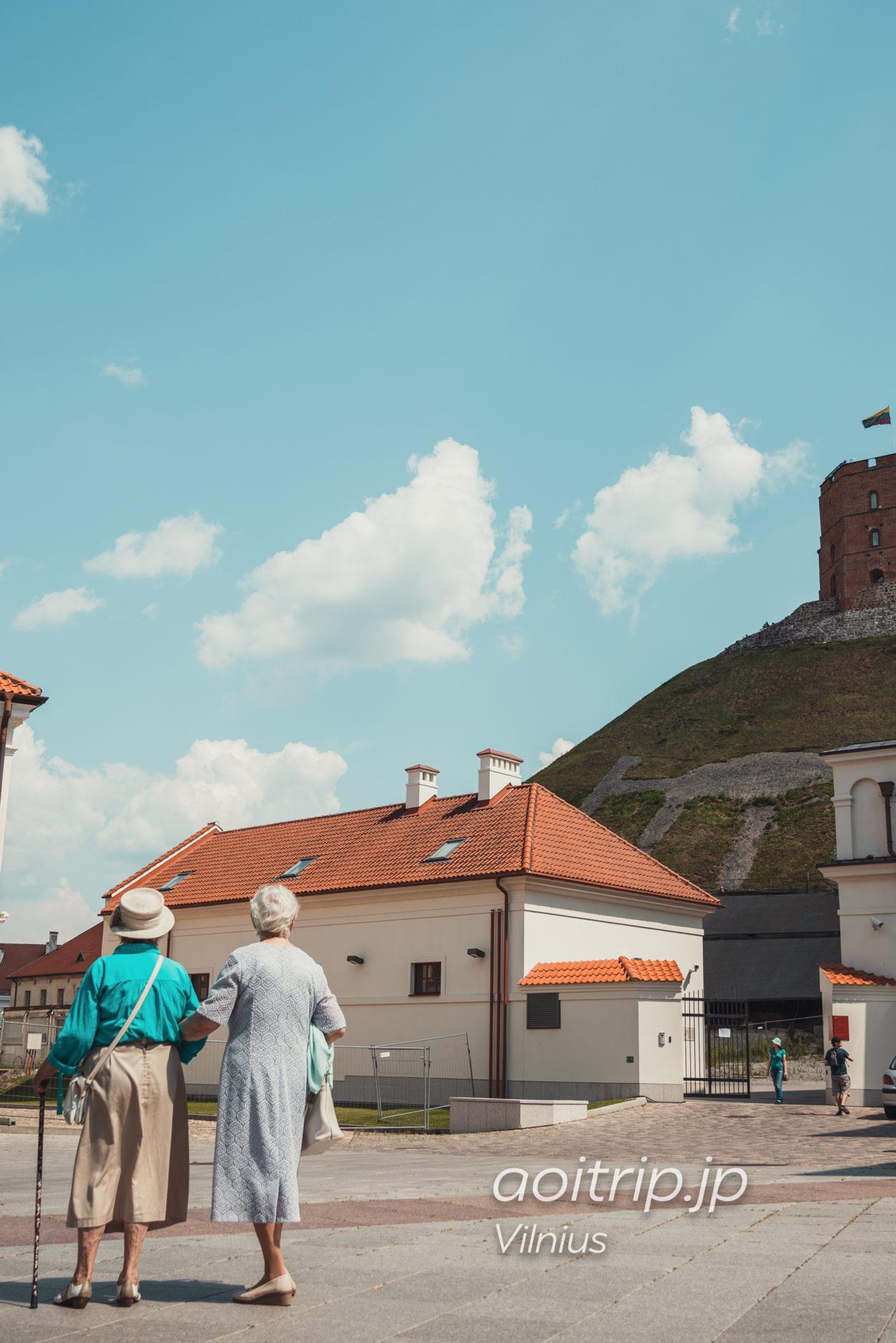 リトアニアのヴィリニュス ゲディミナス城