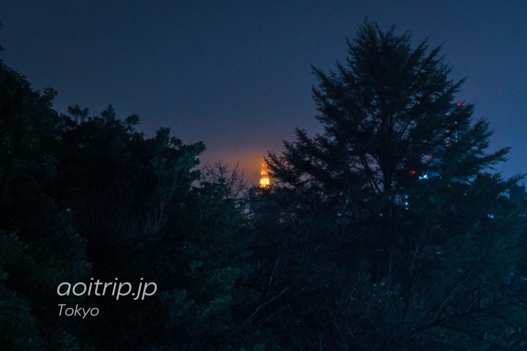 ザ プリンス さくらタワー東京のお部屋から望む東京タワー