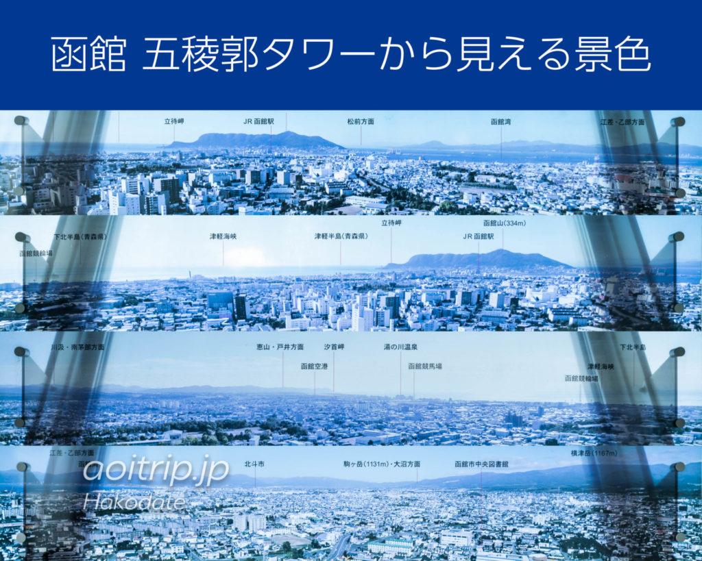函館 五稜郭タワーから見える景色