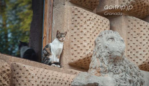 グラナダ ニャルハンブラ宮殿にお住まいの猫たち