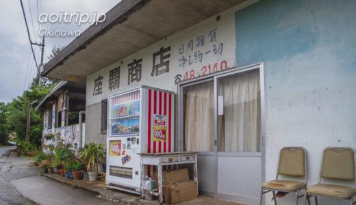 岩合さんの頭の上に乗った子猫に会いたくて、沖縄県本部町