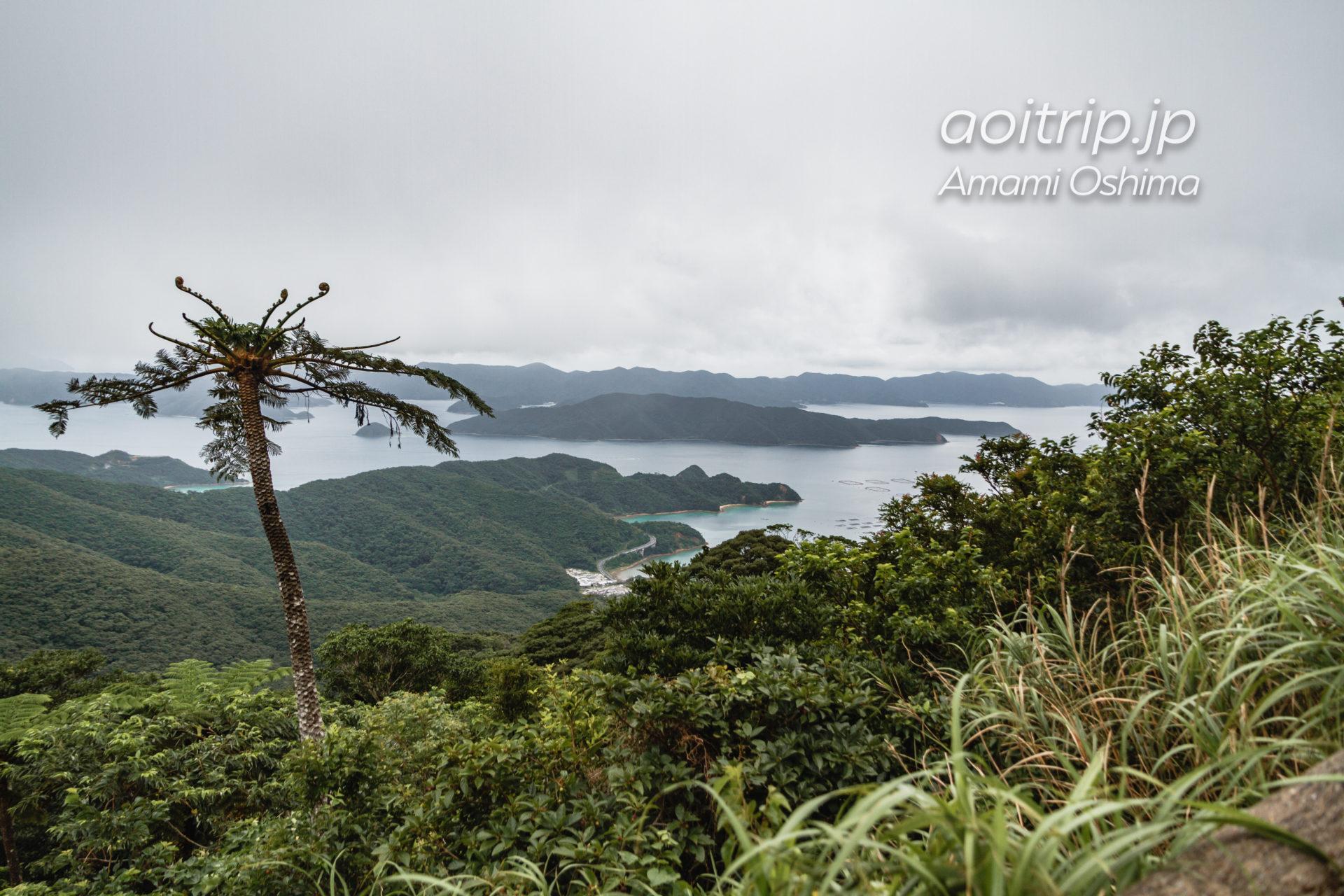 奄美大島の油井岳展望所