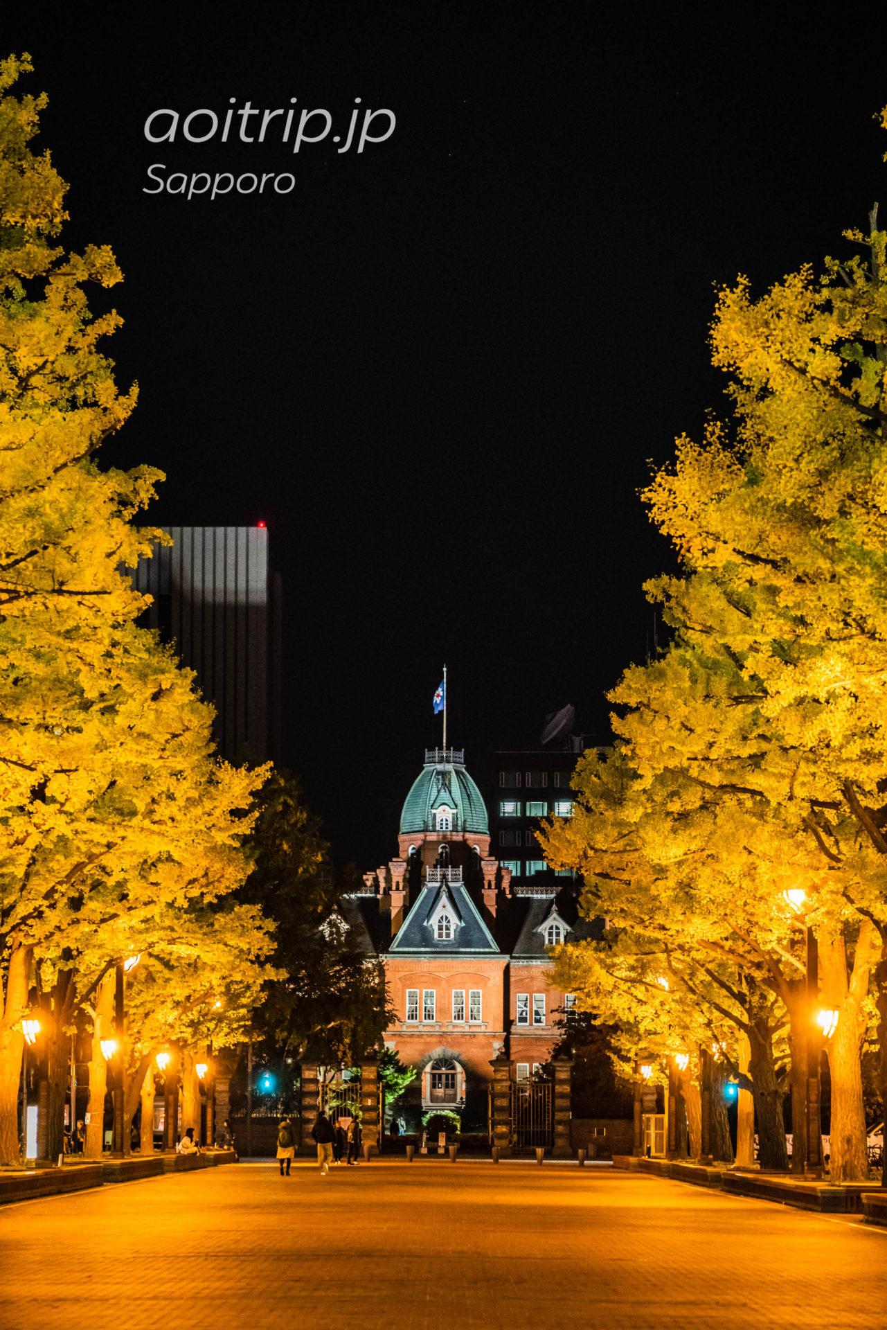秋の北海道庁赤れんが庁舎前と銀杏並木