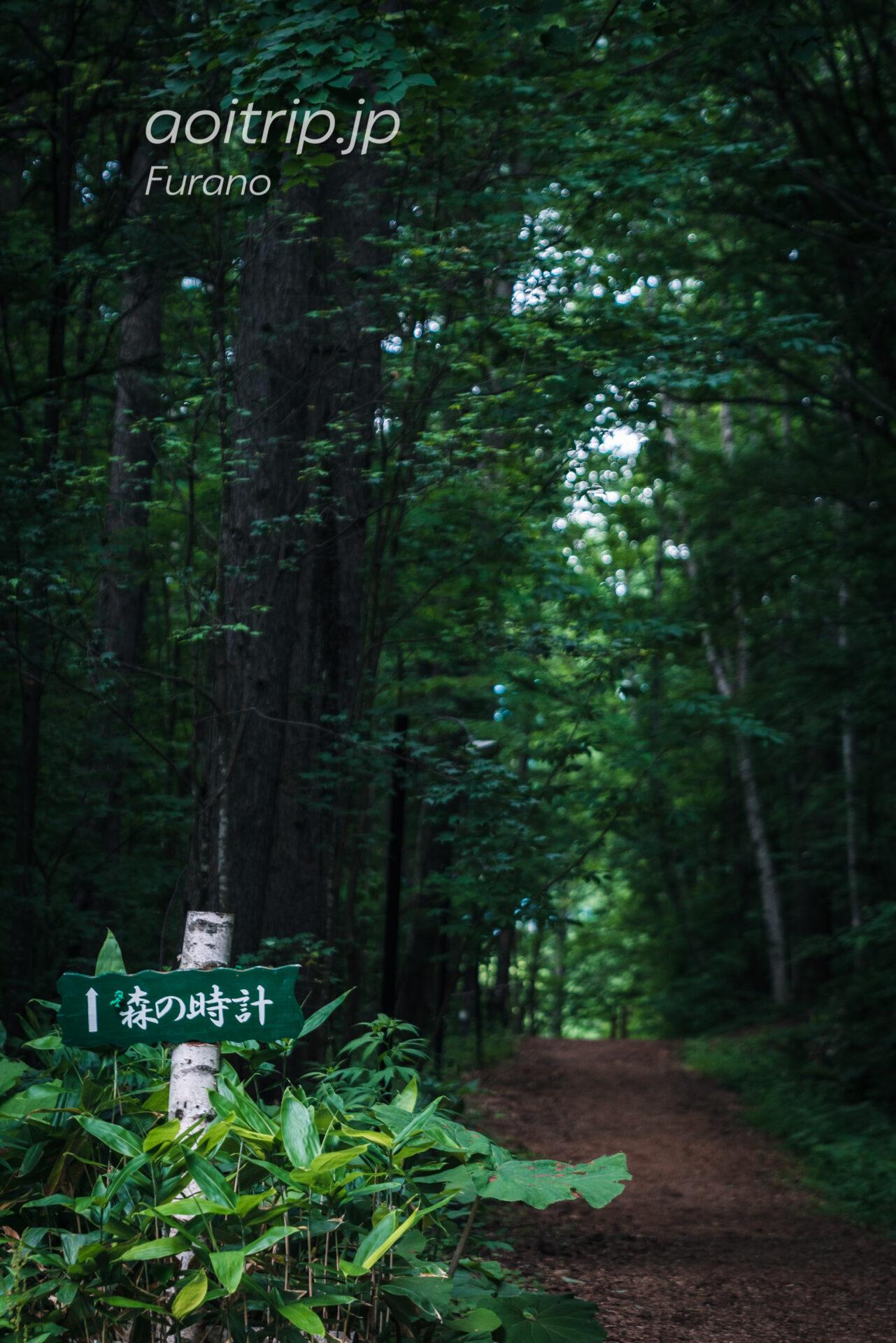 珈琲 森の時計へつづくウッドチップの林道