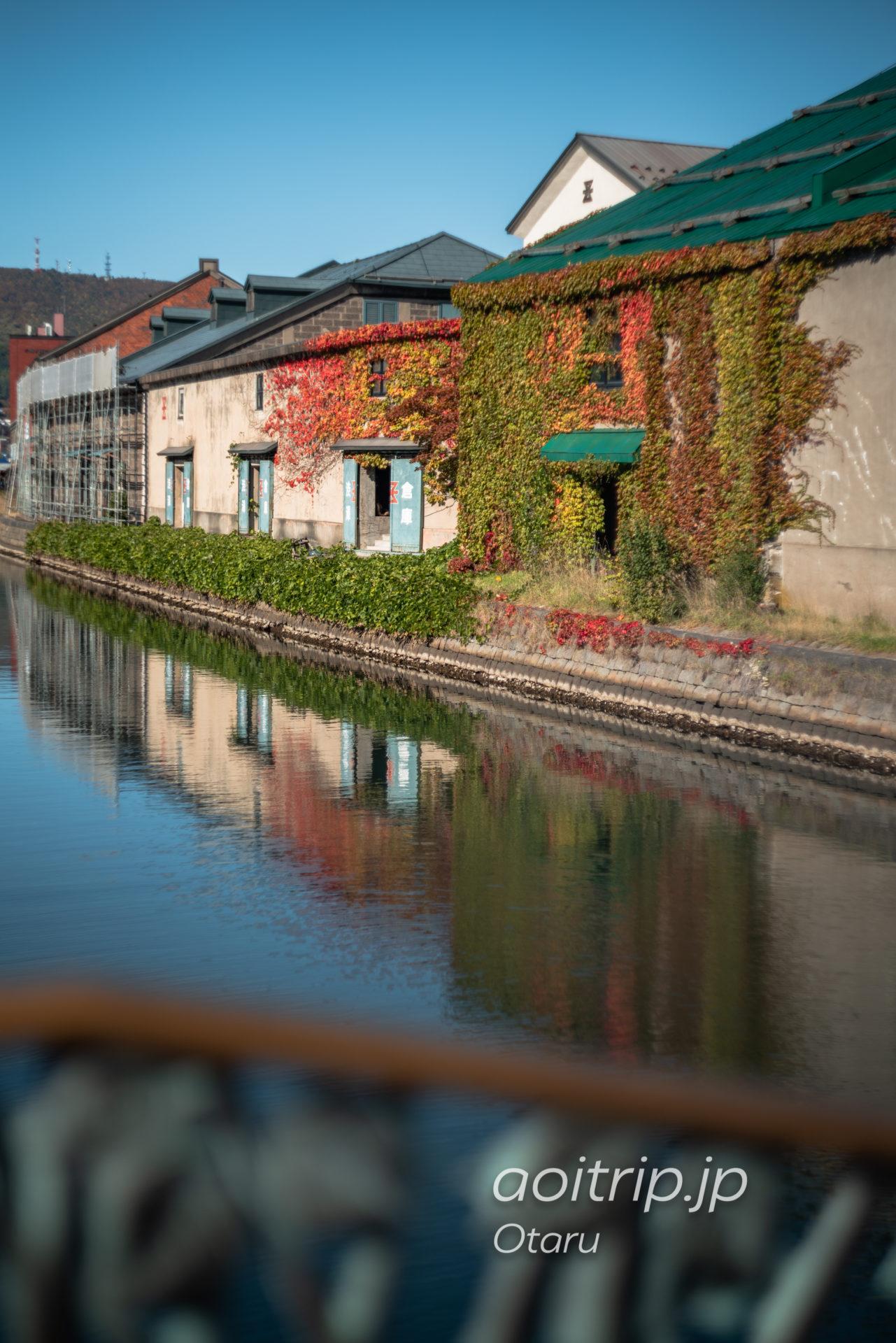 秋の小樽運河