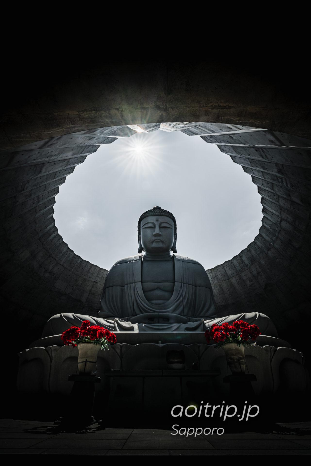 札幌市南区 真駒内滝野霊園にある頭大仏殿