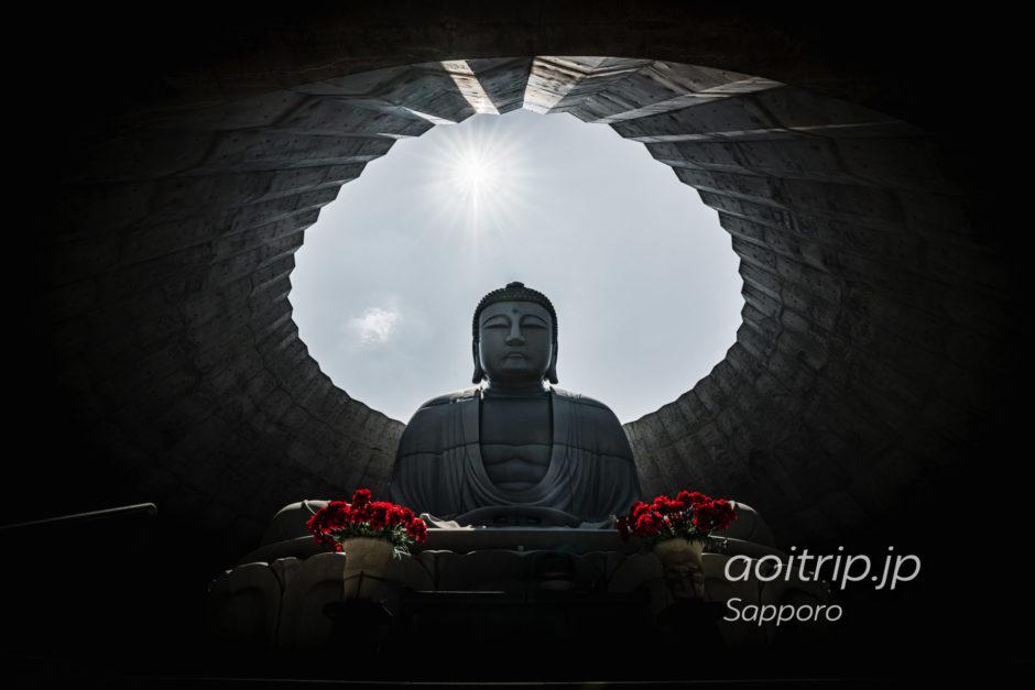 札幌市南区 真駒内滝野霊園にある頭大仏殿 Hill of the Buddha
