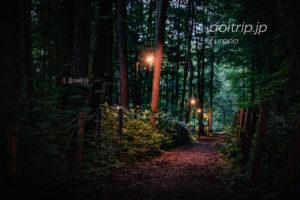 珈琲 森の時計|富良野の森の中にある喫茶店