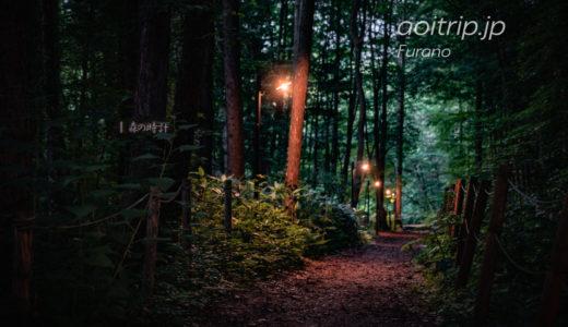 珈琲 森の時計|富良野の森の中にある喫茶店 Morinotokei