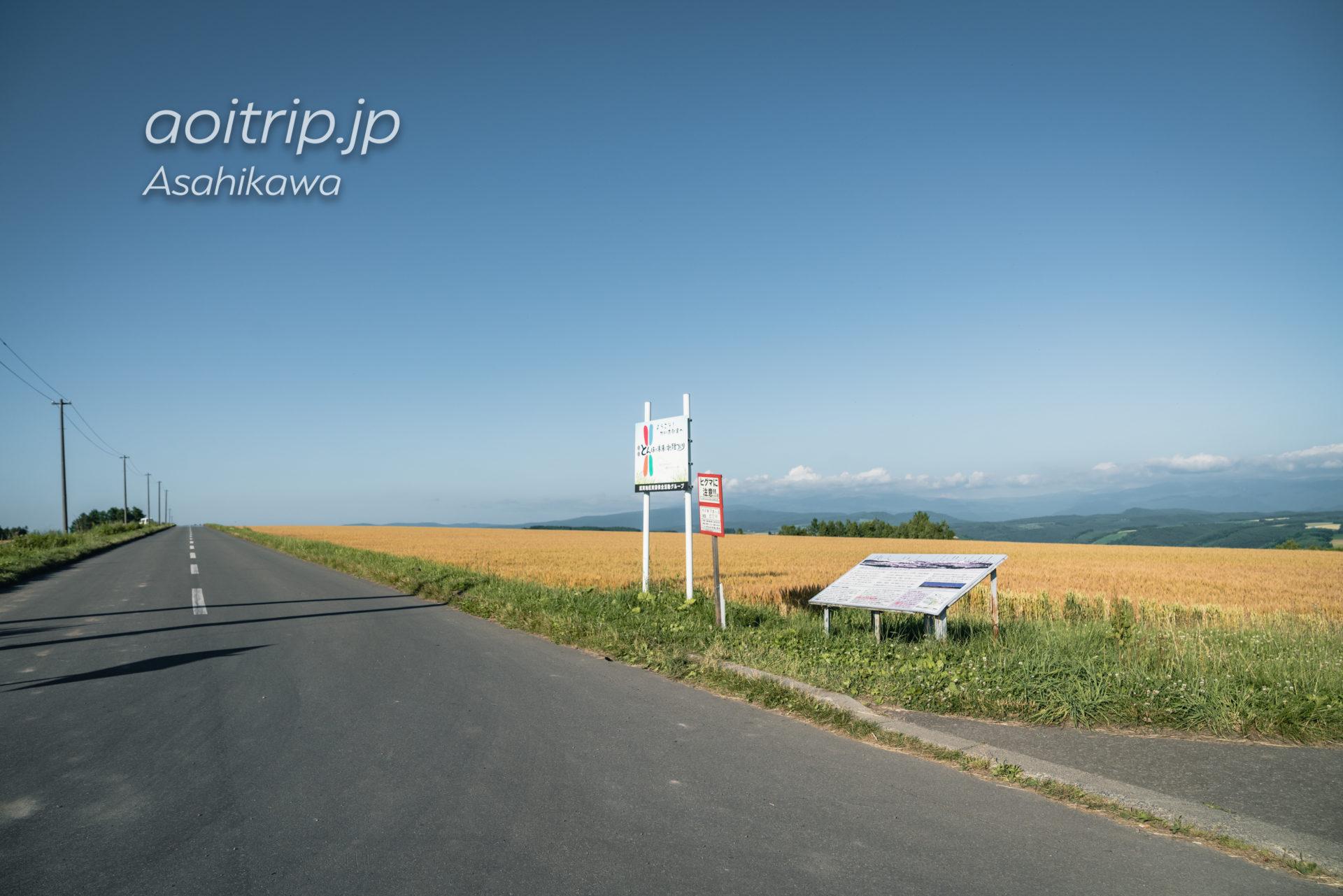 就実の丘(旭川)|Shujitsu no Oka, Asahikawa