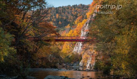 秋の札幌で訪れてほしい紅葉の名所 Most Beautiful Places in Sapporo in Autumn