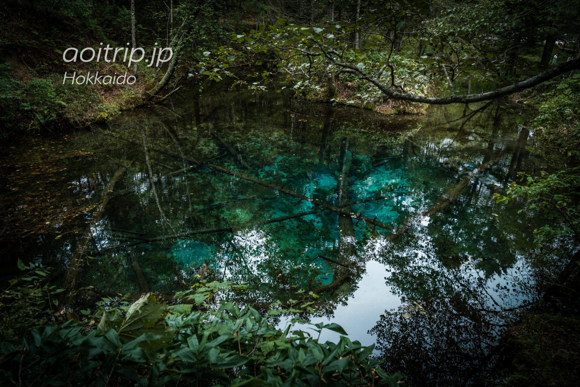 神の子池 Kaminoko Pond