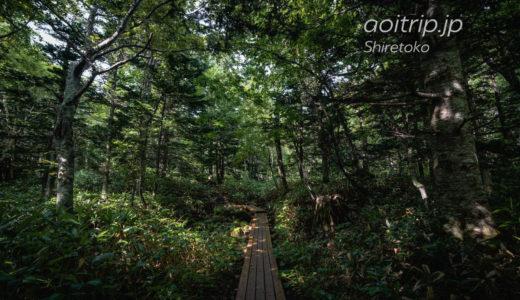 北海道 知床国立公園 旅行記 Shiretoko National Park, Hokkaido