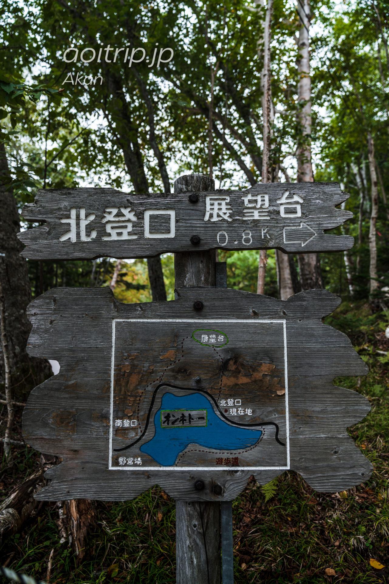 オンネトー展望台コース