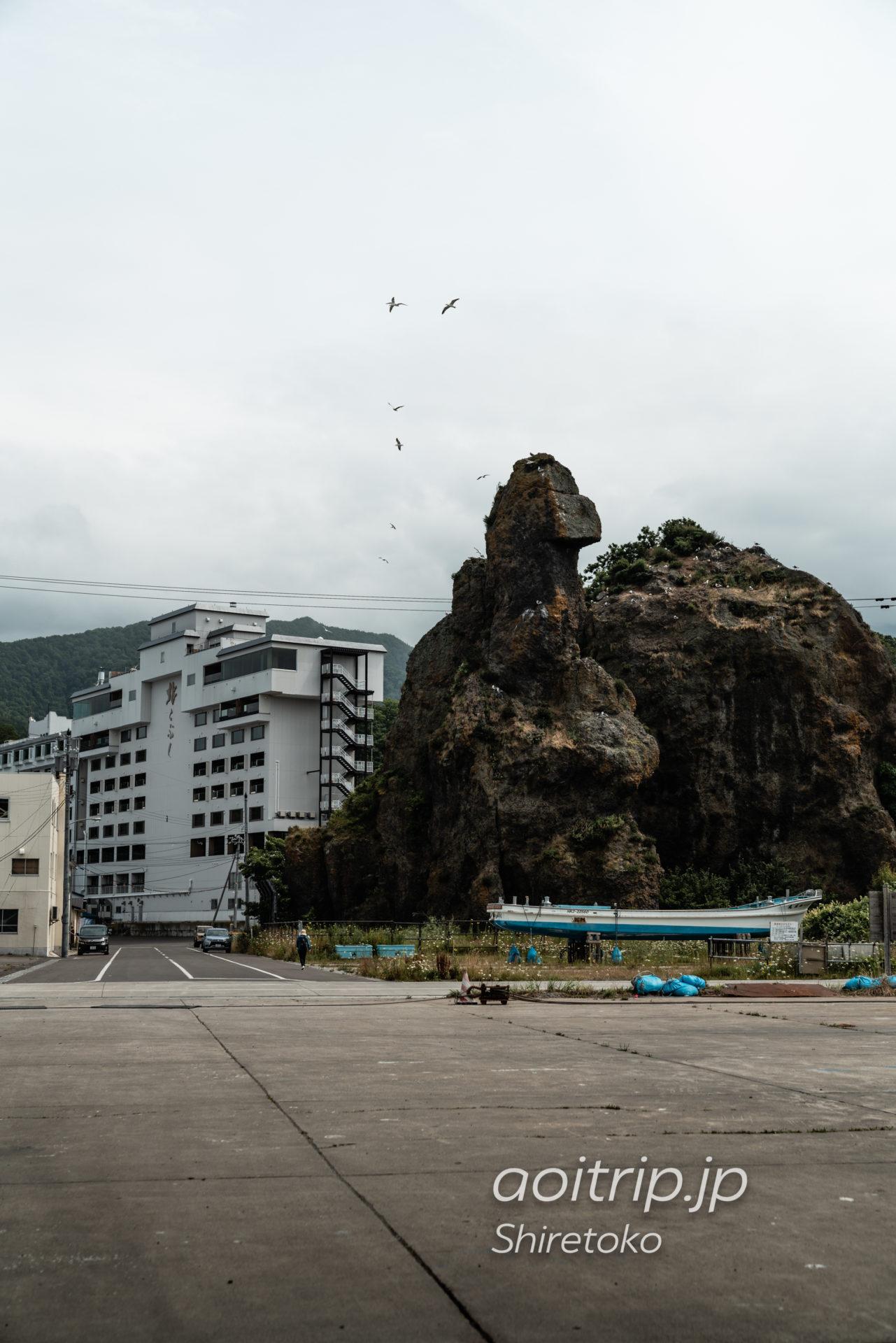 知床半島のゴジラ岩