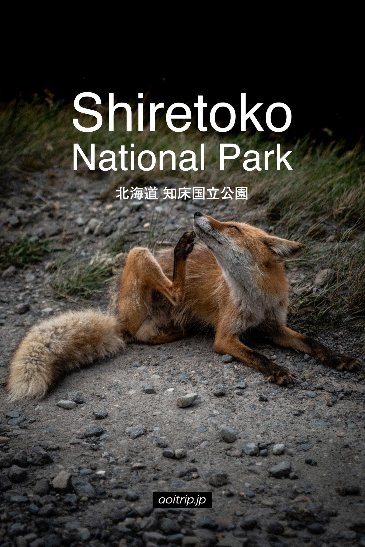 知床国立公園 旅行記 Shiretoko, Hokkaido