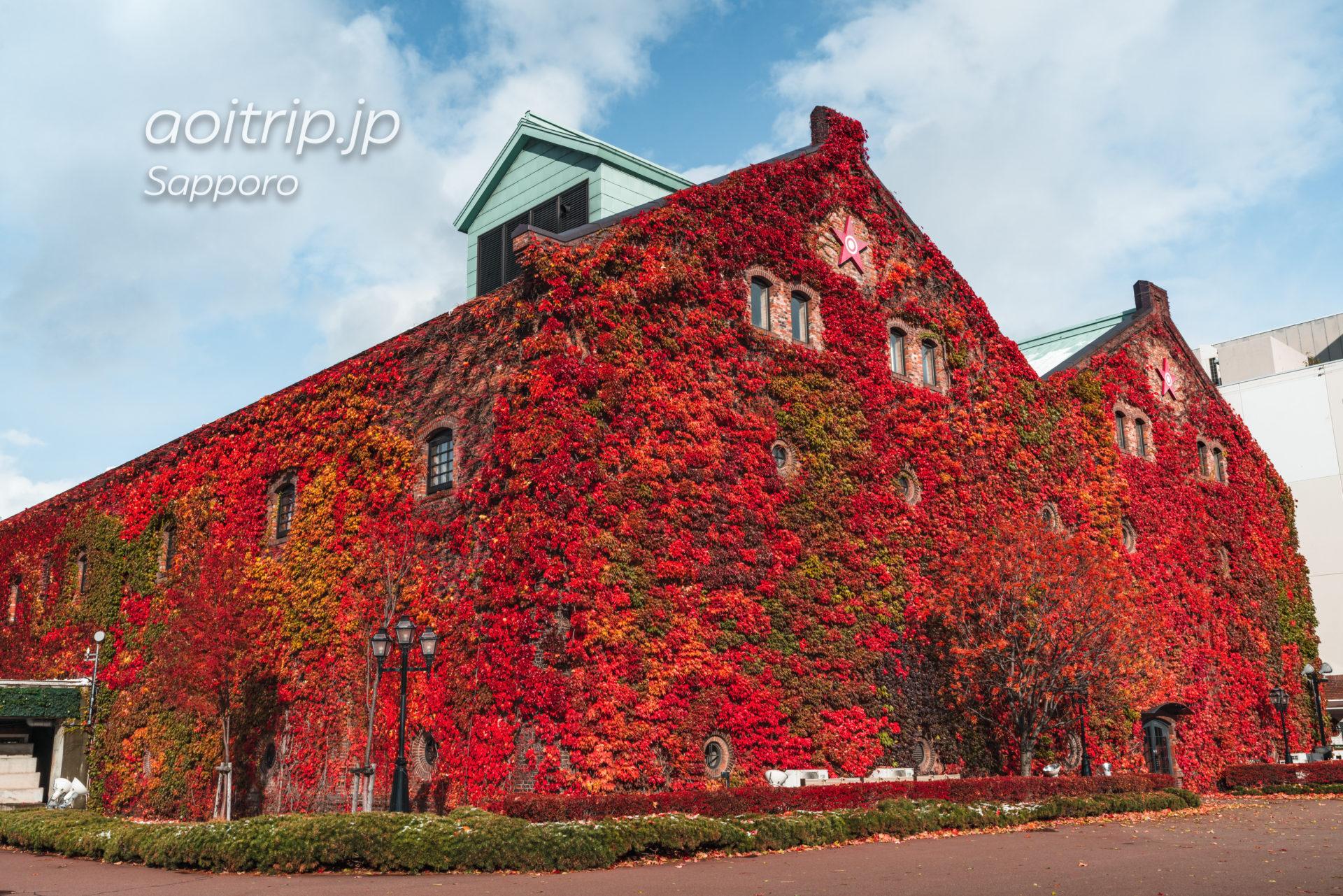 蔦紅葉が美しい秋のサッポロファクトリー赤煉瓦館|Sapporo Factory