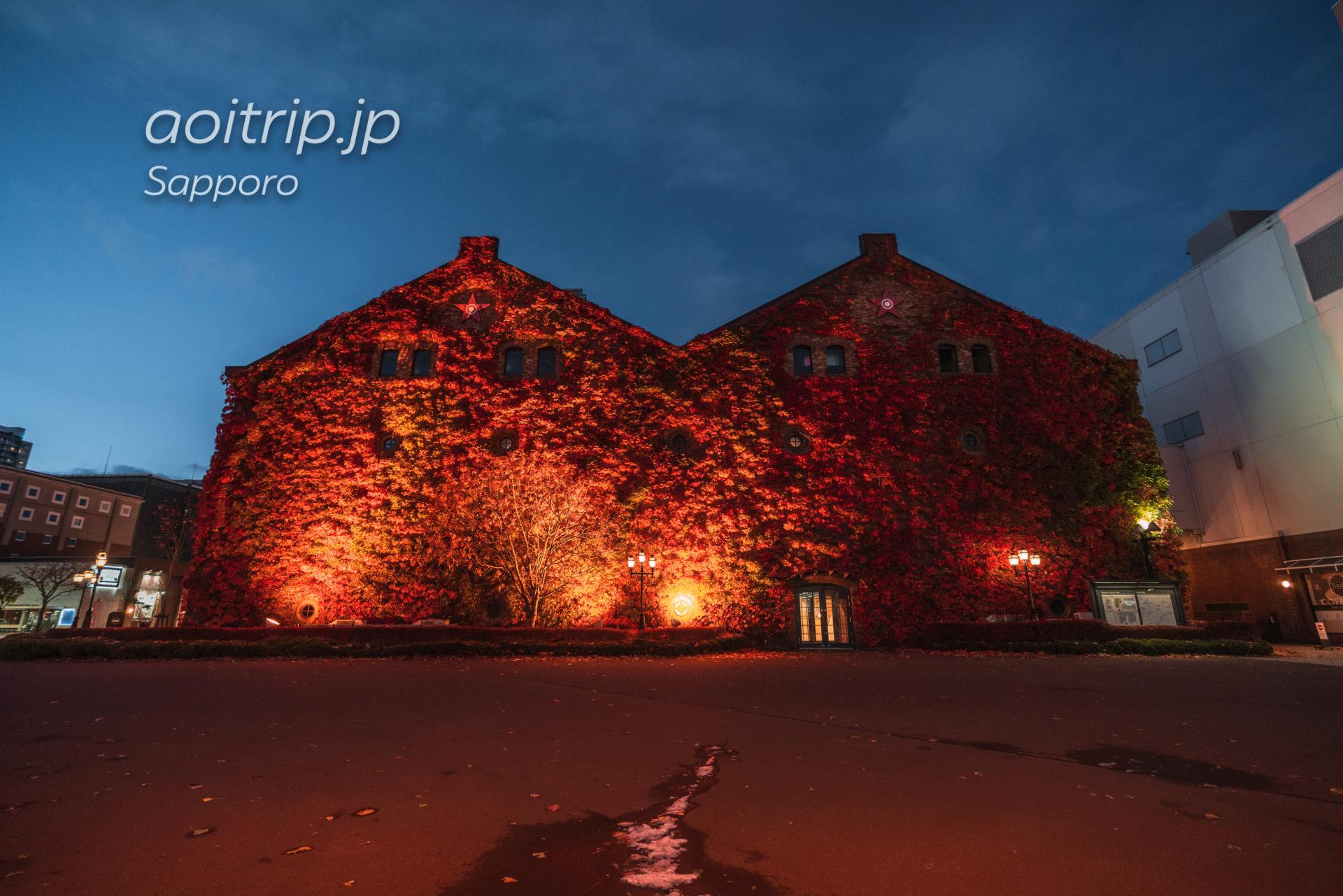 蔦紅葉が美しい秋のサッポロファクトリー赤煉瓦館の夜景