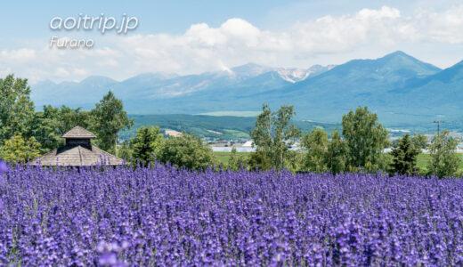 富良野でラベンダー観賞する際に訪れてほしい名所 The Best Lavender Gardens in Furano