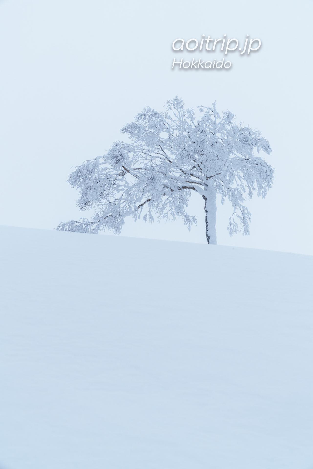 霧氷テラスの景色