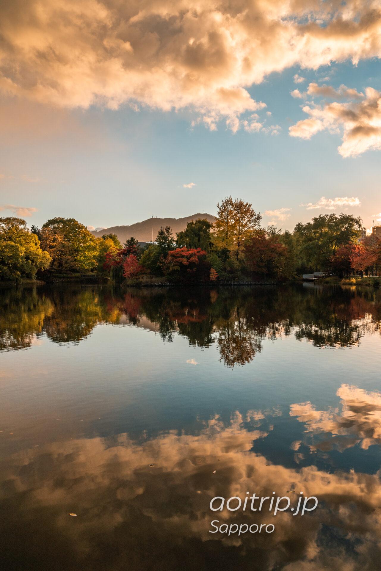 札幌の中島公園 菖蒲池の紅葉