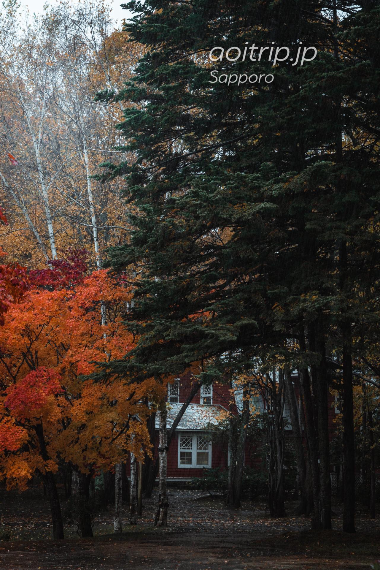 秋の札幌芸術の森
