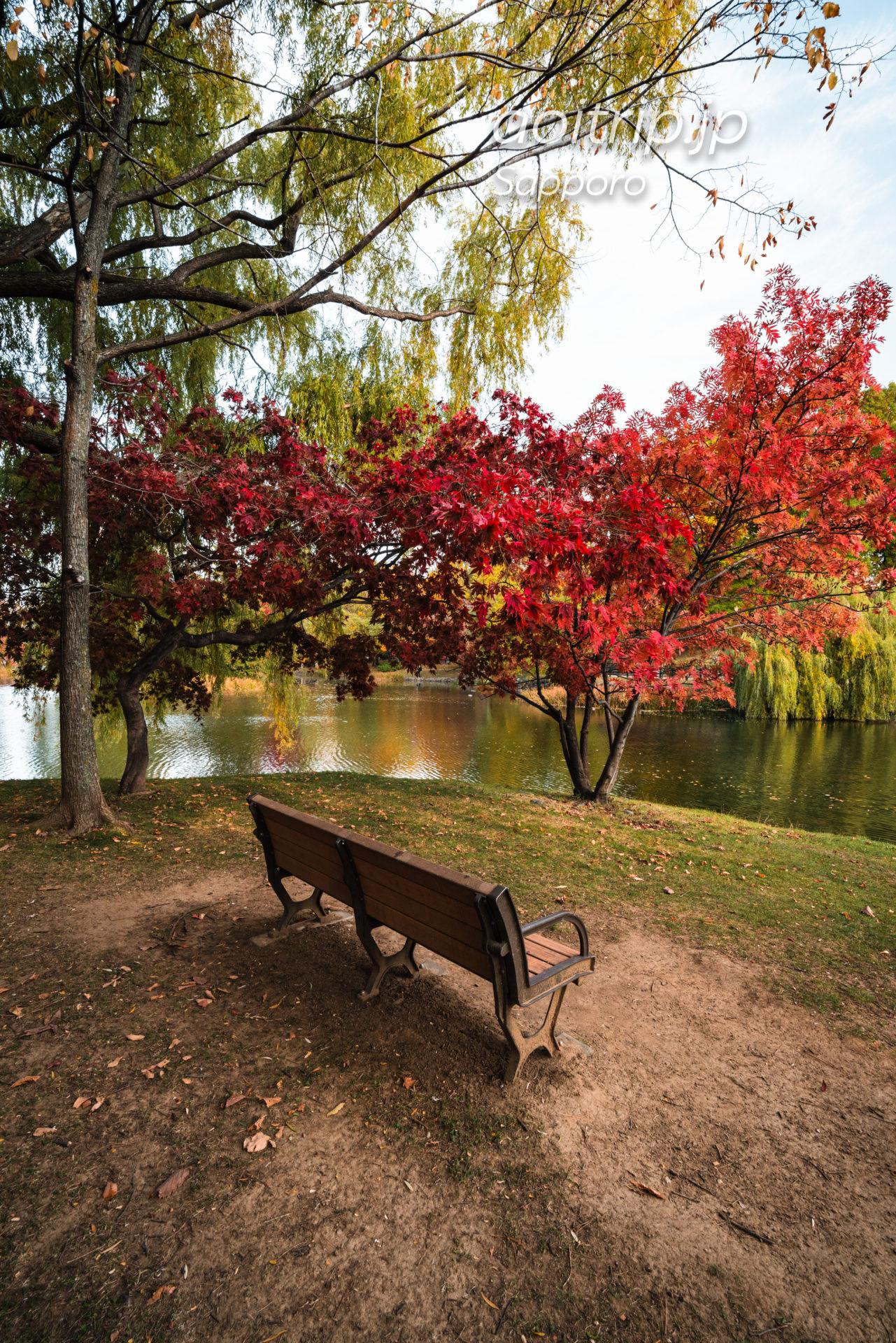 札幌の中島公園 紅葉