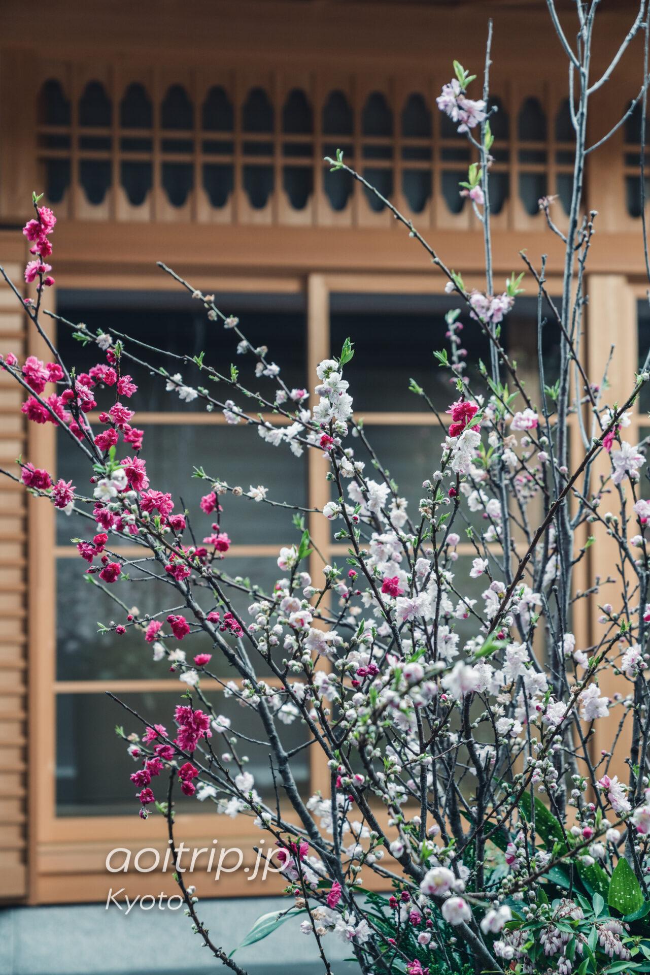 ホテルザ三井京都のアフタヌーンティー、テラス席