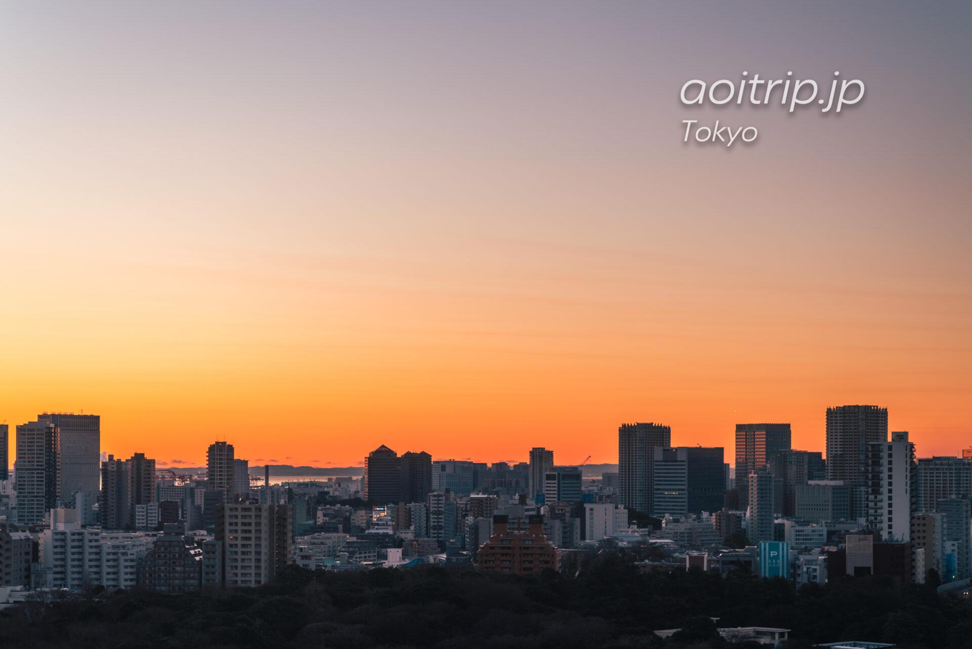 ウェスティン東京から東京都庭園美術館と東京マリオットホテルを望む