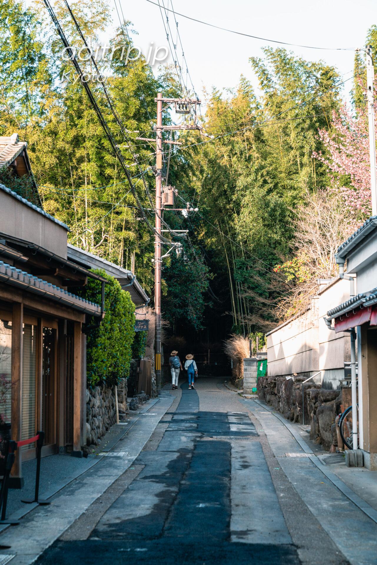 京都嵐山 竹林の小径への行き方