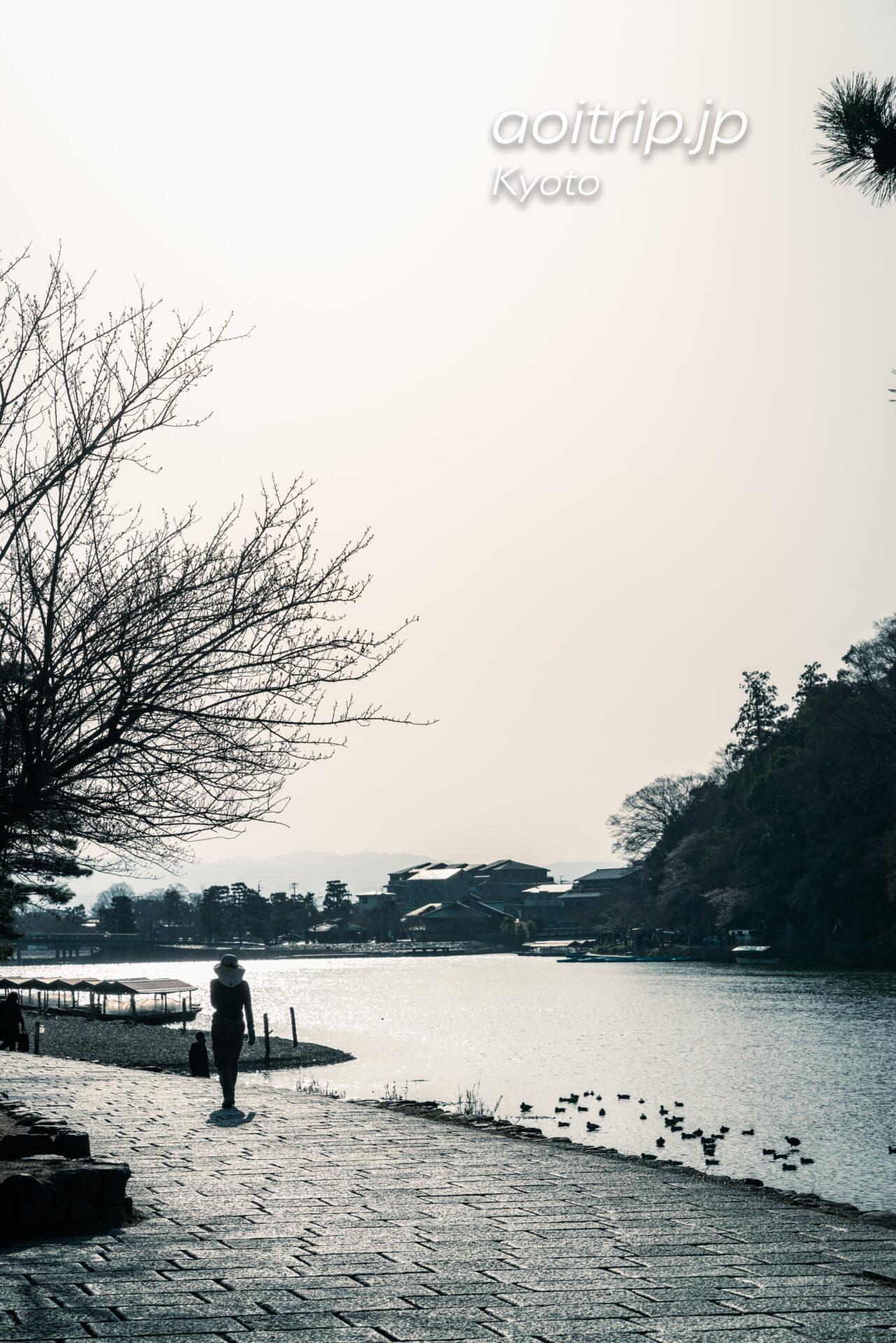京都嵐山 桂川