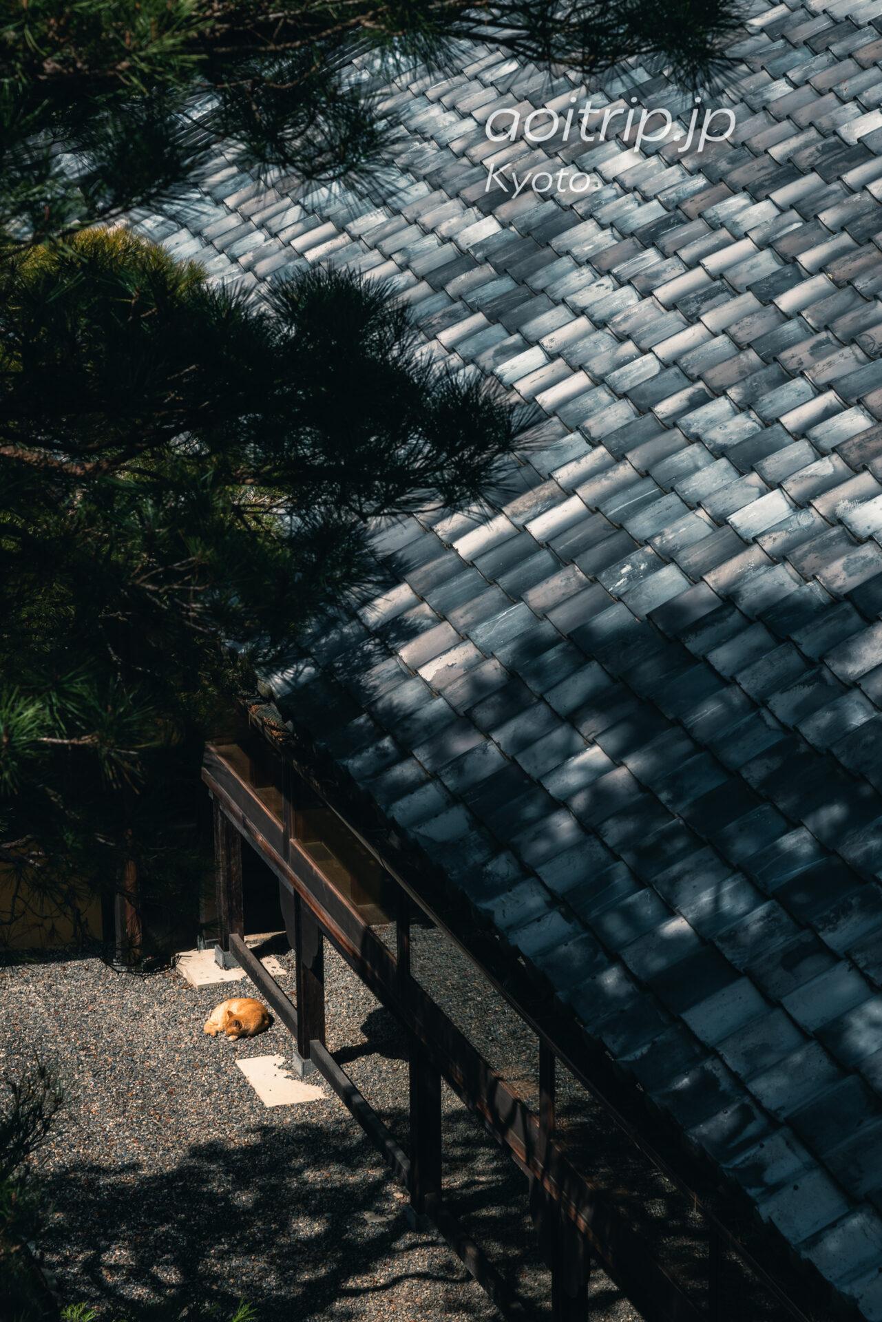 翠嵐 ラグジュアリーコレクションホテル 京都 宿泊記|Suiran, a Luxury Collection Hotel, Kyoto 旧延命閣