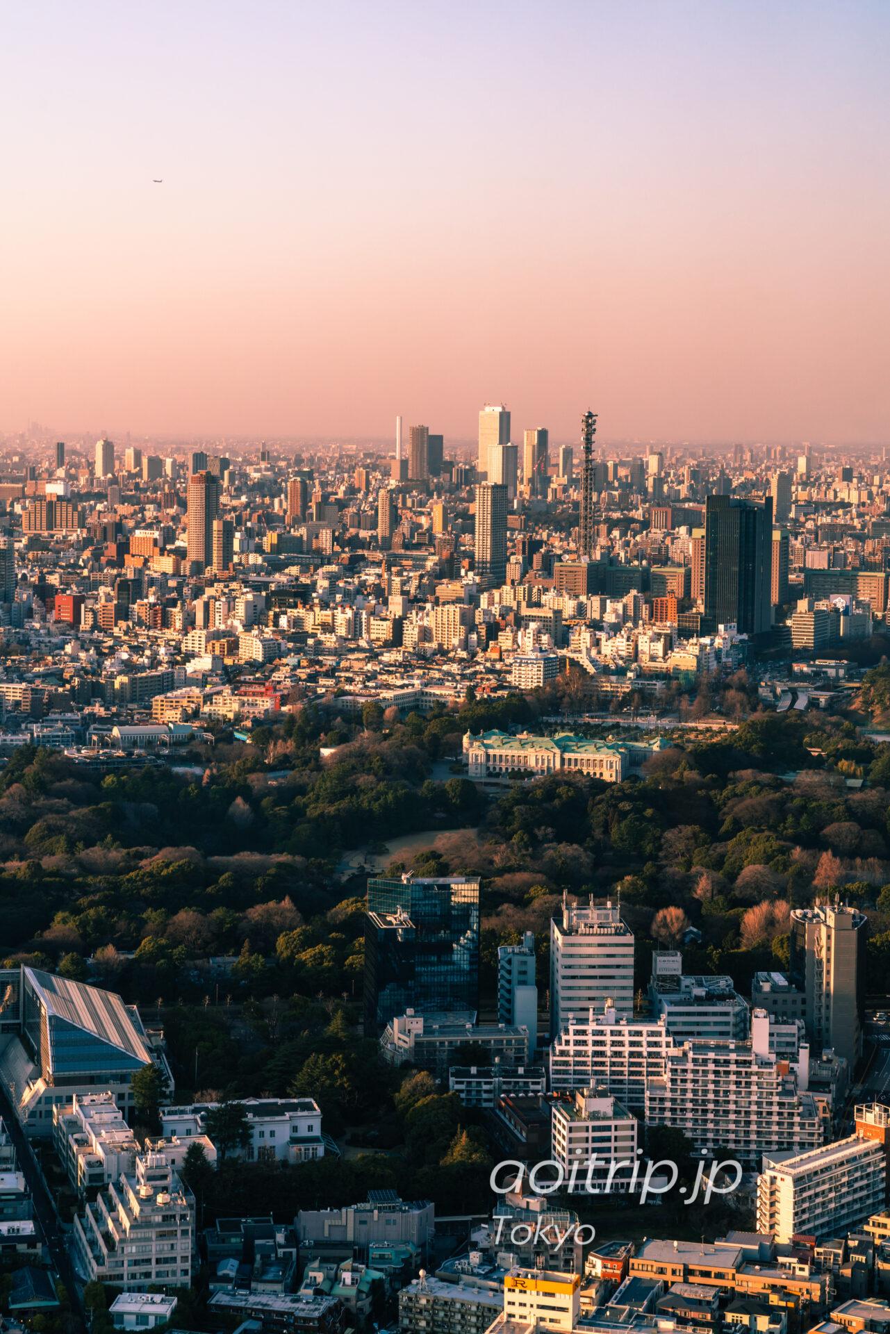 Tokyo Skyline ザ リッツカールトン東京から望む新宿副都心と池袋
