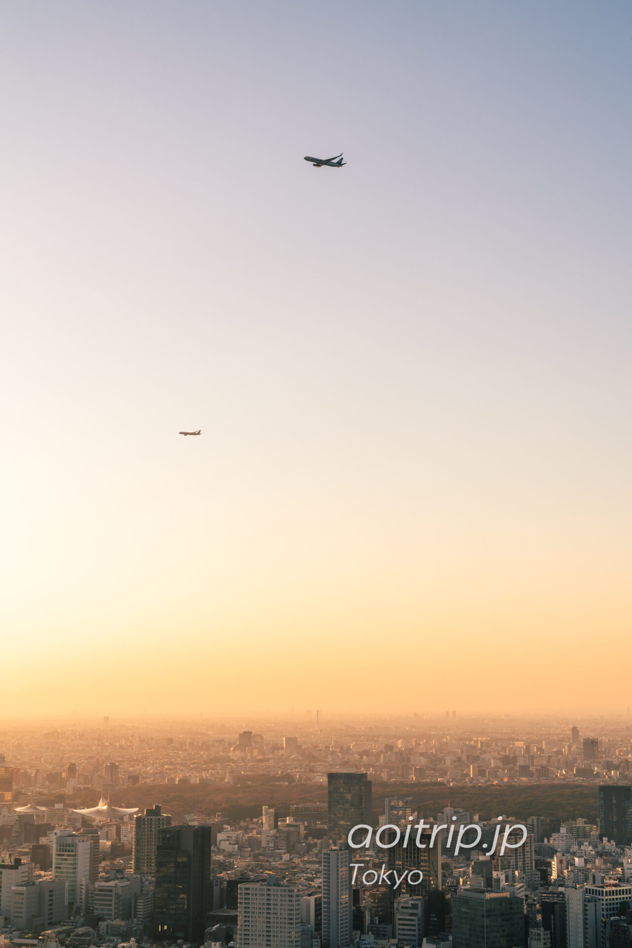 Tokyo Skyline ザ リッツカールトン東京から望む明治神宮と飛行機