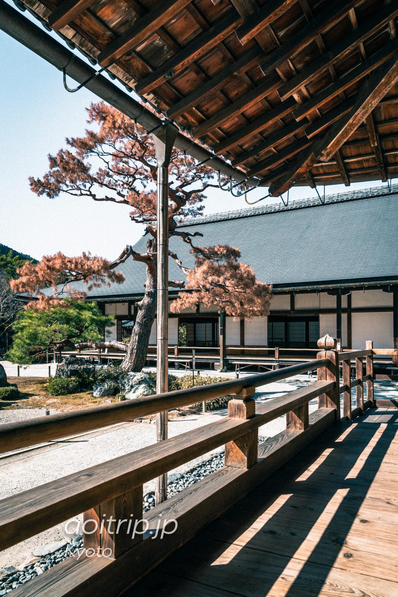 世界文化遺産 京都嵐山の天龍寺