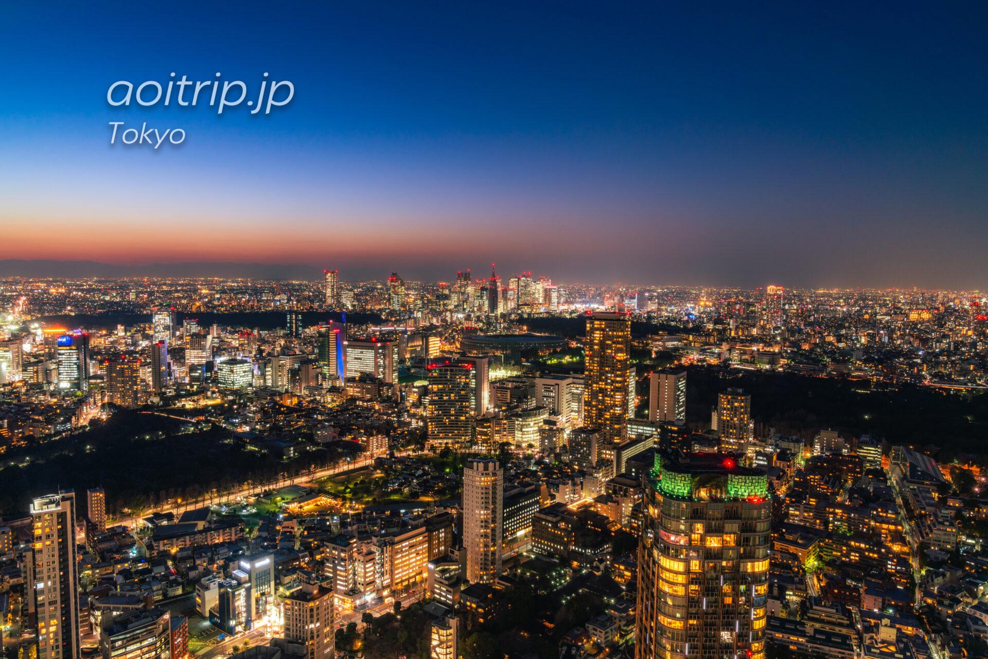 ザ リッツ カールトン東京から望む新宿副都心の夜景