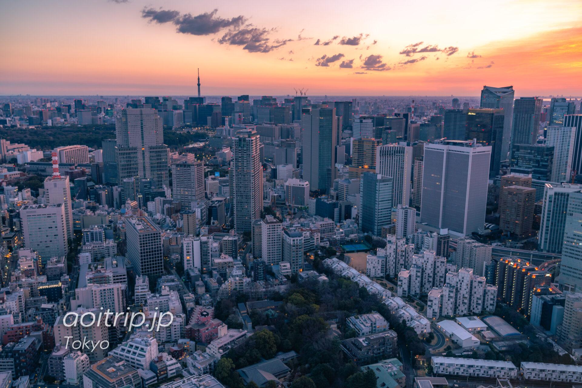 Tokyo Skyline ザ リッツカールトン東京から望む夜明けの空と東京スカイツリー