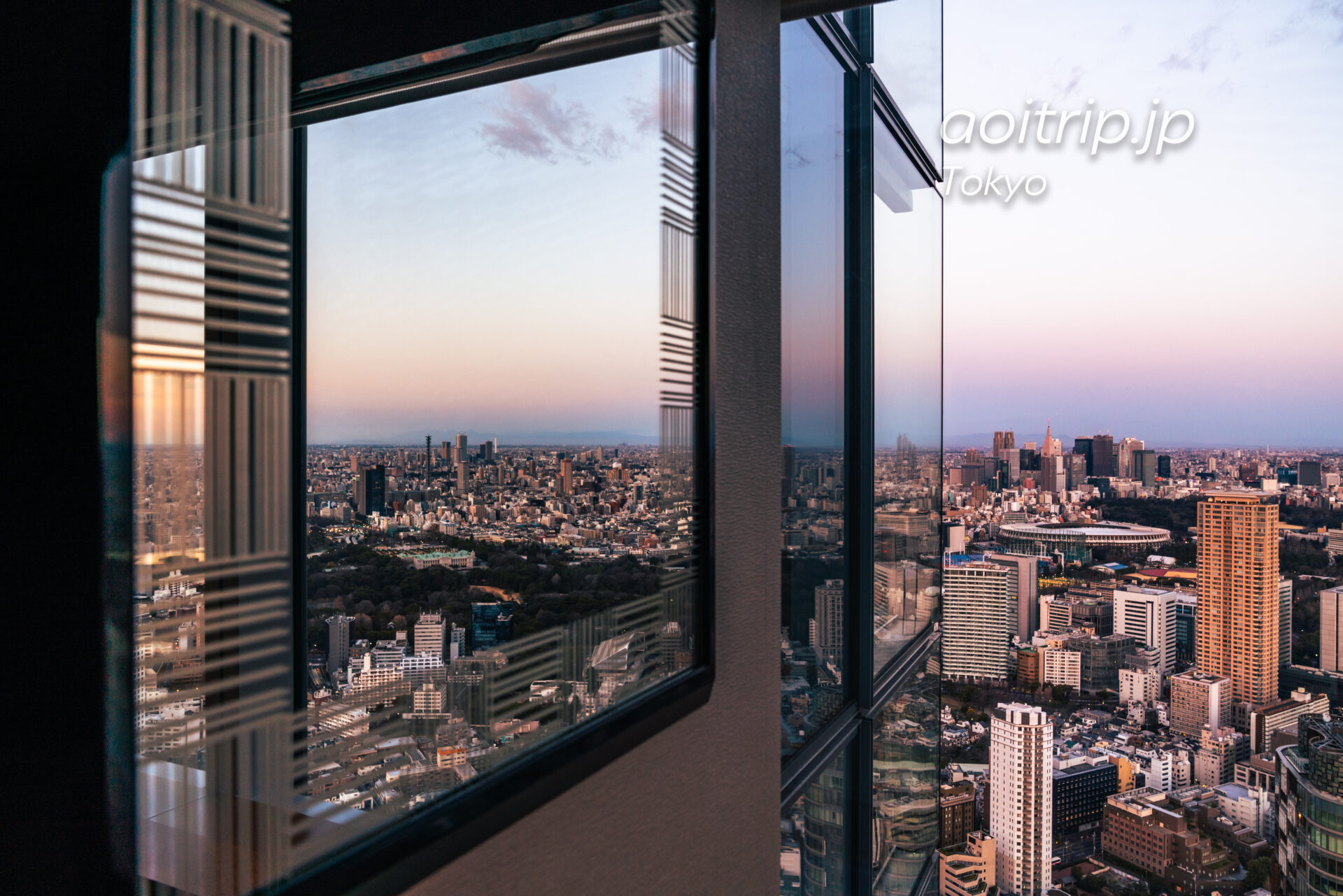 Tokyo Skyline ザ リッツカールトン東京から望む早朝の新宿と池袋