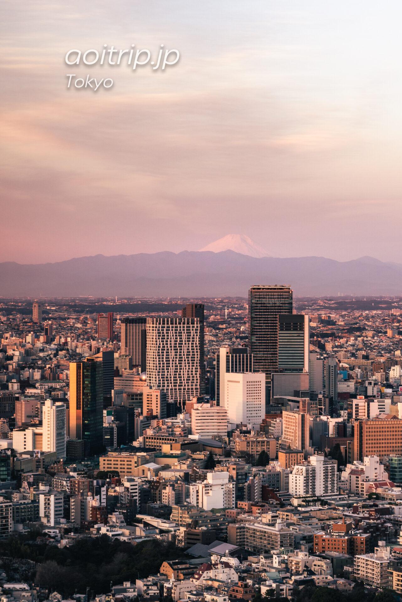 Tokyo Skyline ザ リッツカールトン東京から望む富士山