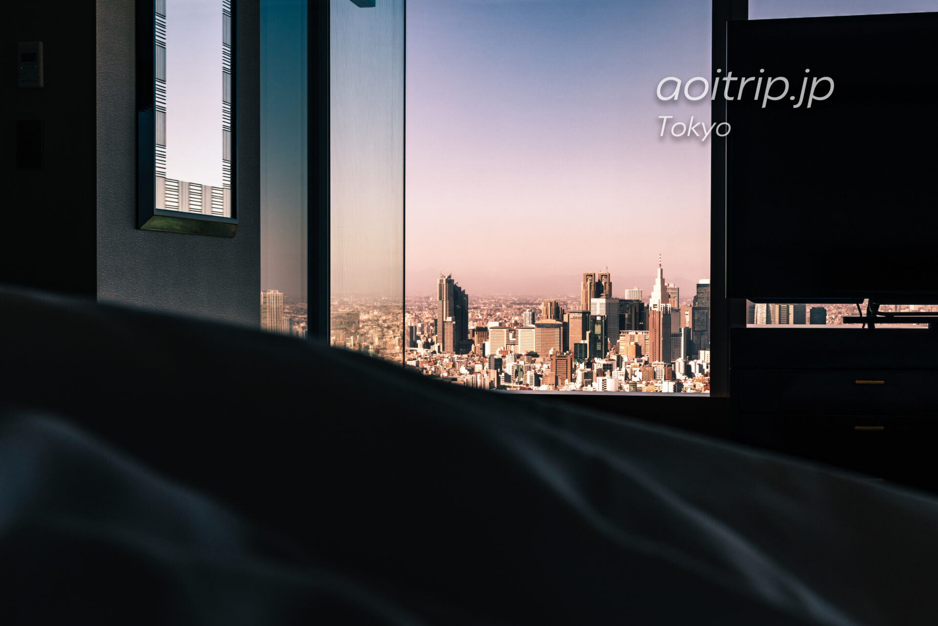 Tokyo Skyline ザ リッツカールトン東京から望む新宿副都心