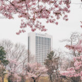 プレミアホテル中島公園 札幌 宿泊記|Premier Hotel Nakajima Park Sapporo