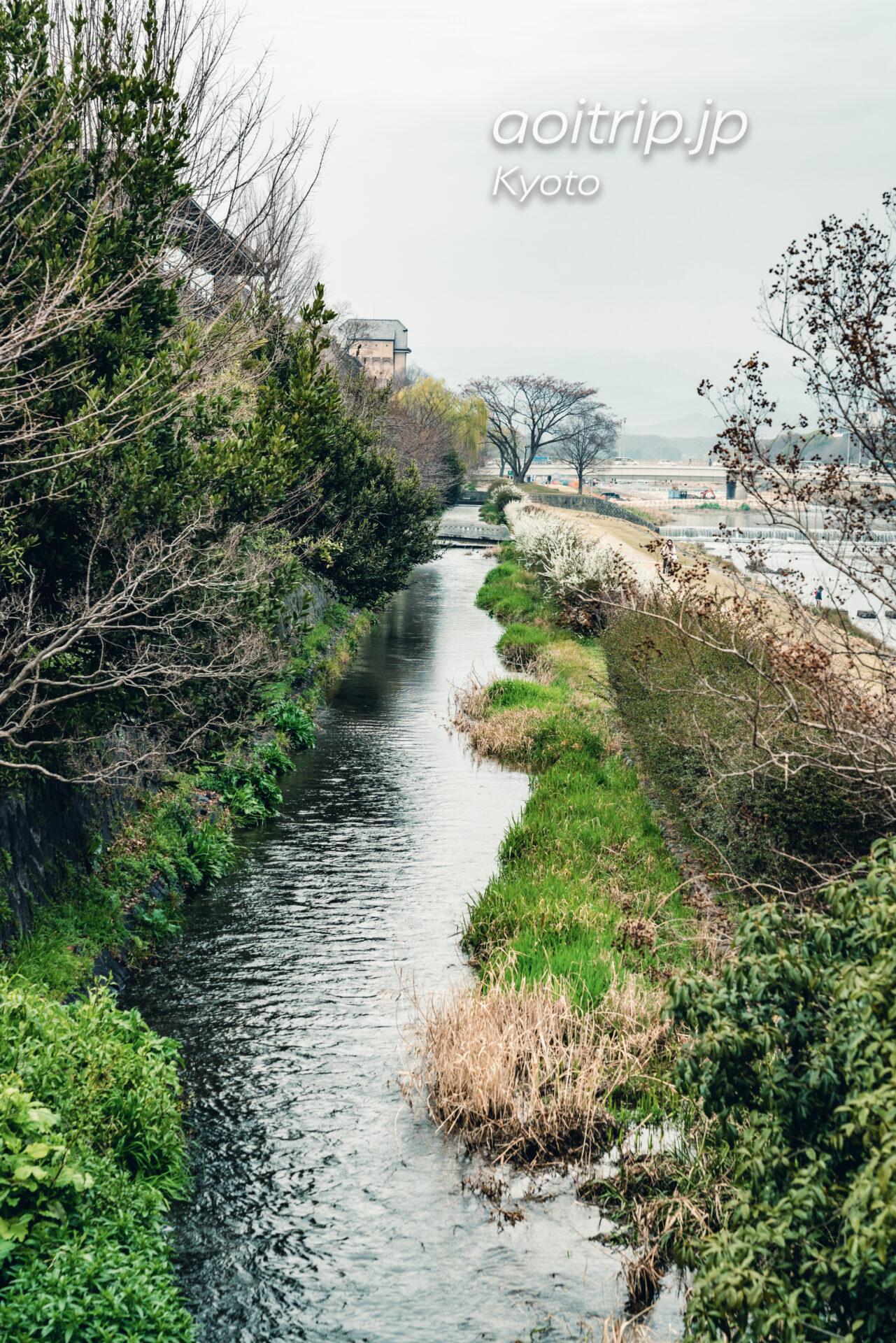ザ リッツカールトン京都の東側を流れる鴨川