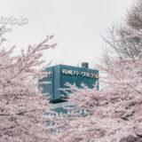 札幌パークホテル 宿泊記|Sapporo Park Hotel