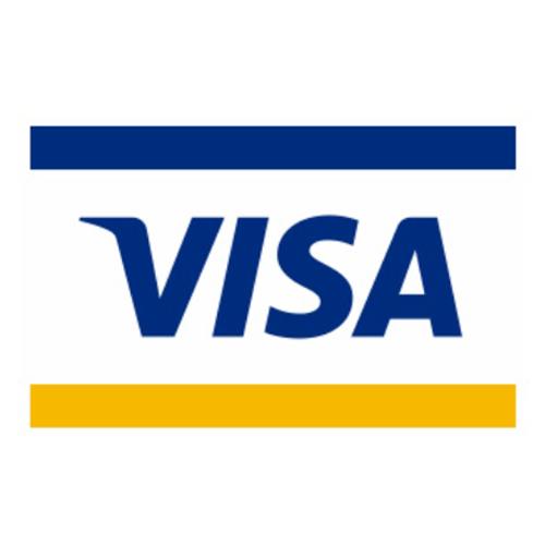 クレジットカード 国際ブランド VISA(ビザ)のロゴ