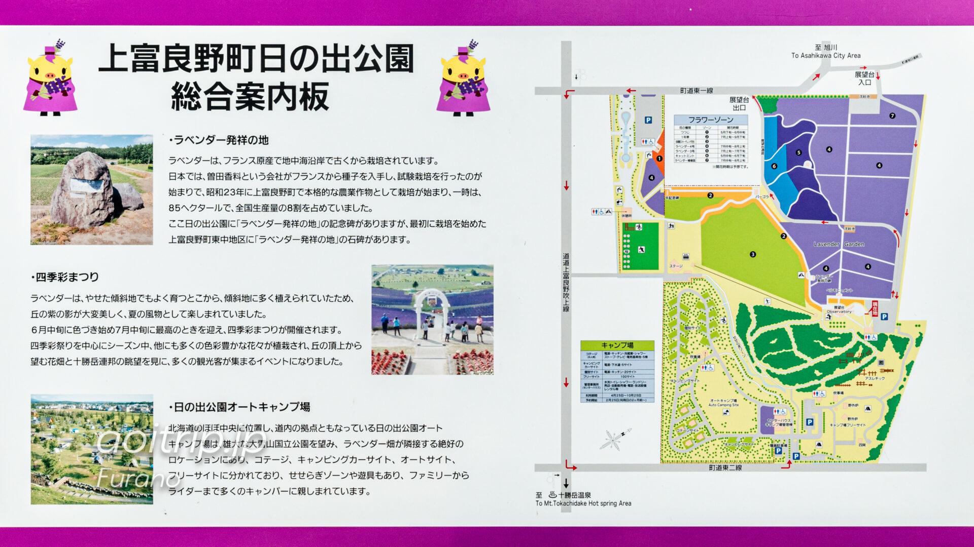 かみふらの 日の出ラベンダー園 Kamifurano Hinode Lavender Garden