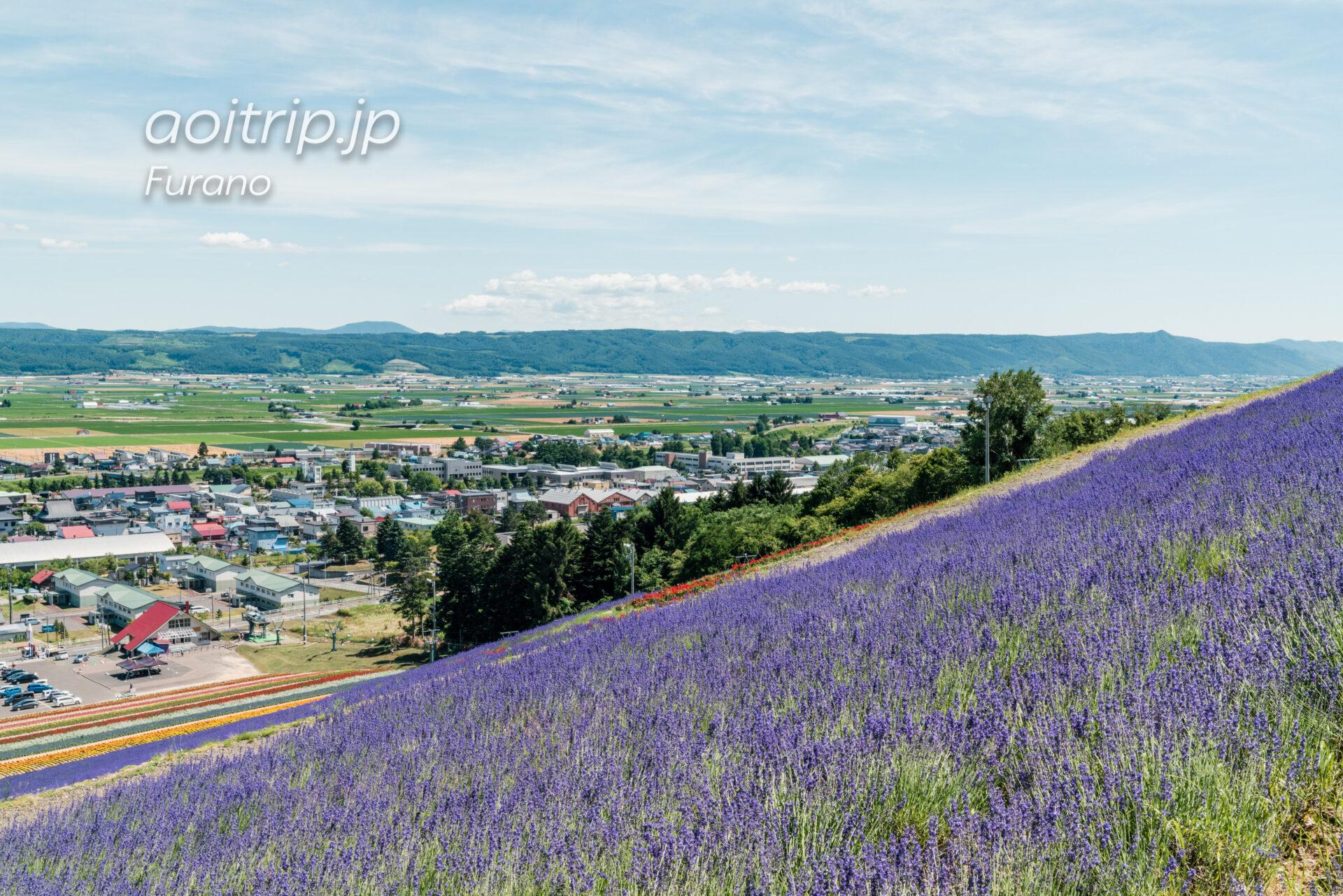中富良野町営ラベンダー園(北星山)から望む富良野岳と前富良野岳