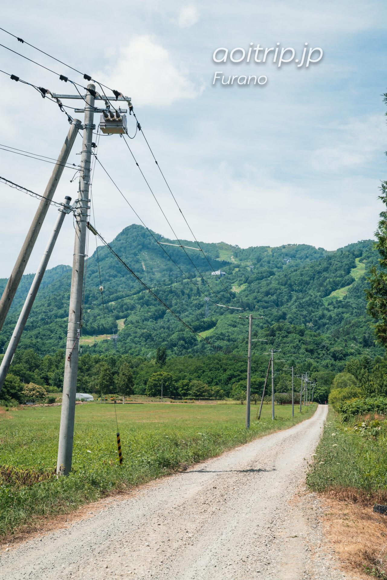 『風のガーデン』北海道・富良野 ロケ地巡り キャンピングカーへ続く道