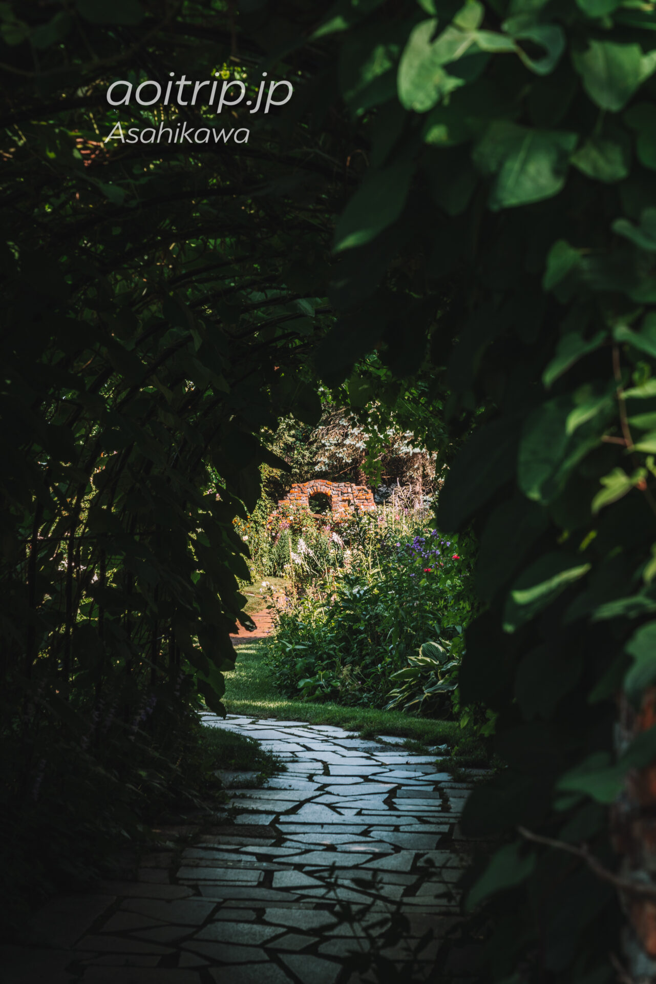 上野ファーム マザーズガーデン Mother's Garden